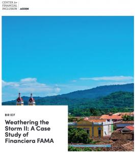Weathering the Storm II_ A Case Study of Financiera FAMA-2